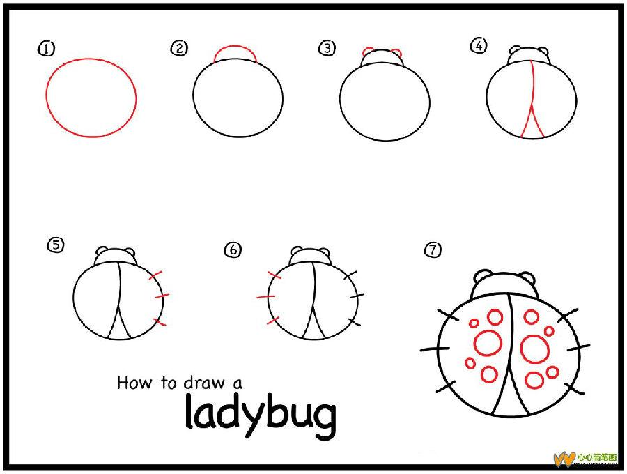 如何画小动物瓢虫简笔画